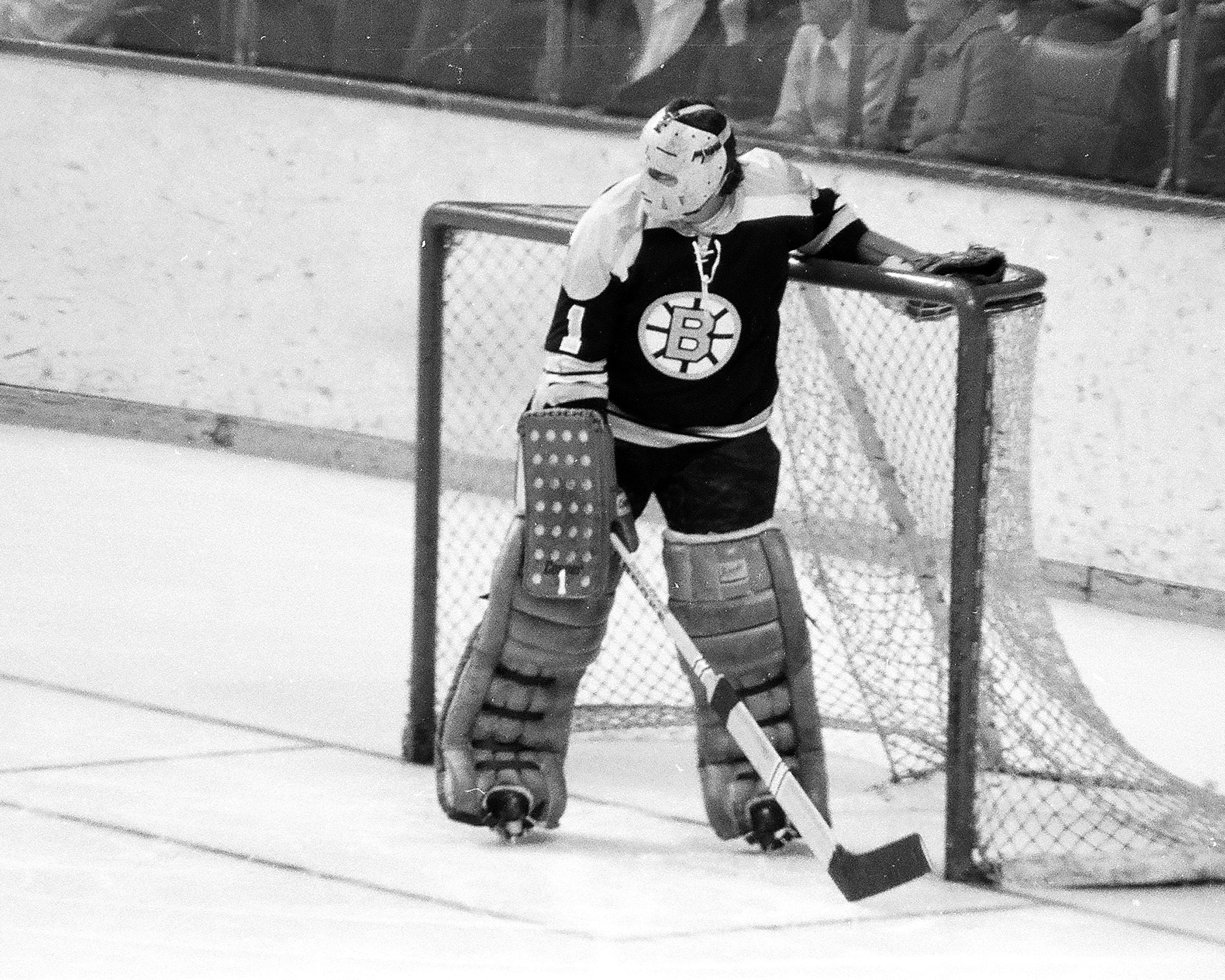 Boston Bruins - Cambria County Sports Hall of Fame