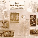 Joe DelSignore collage