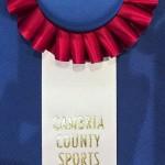 Inductee badge